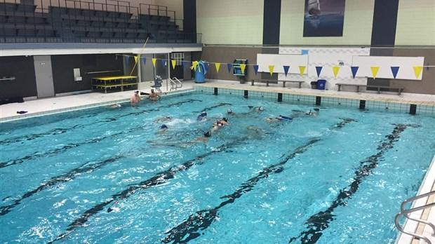 Modification l 39 horaire de la piscine pierre harvey les for Piscine ouverte le 11 novembre